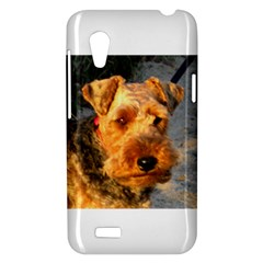 Welch Terrier HTC Desire VT (T328T) Hardshell Case
