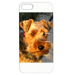 Welch Terrier Apple iPhone 5 Hardshell Case with Stand