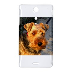 Welch Terrier Sony Xperia TX