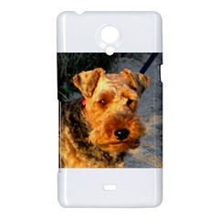 Welch Terrier Sony Xperia T