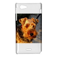 Welch Terrier Sony Xperia J