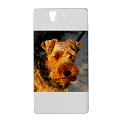 Welch Terrier Sony Xperia Z