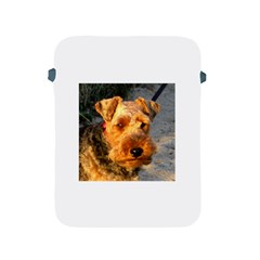 Welch Terrier Apple iPad 2/3/4 Protective Soft Cases