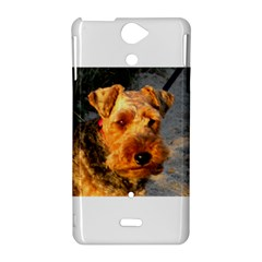 Welch Terrier Sony Xperia V