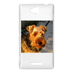 Welch Terrier Sony Xperia C (S39H)