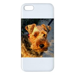 Welch Terrier iPhone 5S/ SE Premium Hardshell Case