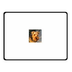 Welch Terrier Double Sided Fleece Blanket (Small)