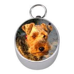 Welch Terrier Mini Silver Compasses