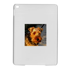 Welch Terrier iPad Air 2 Hardshell Cases