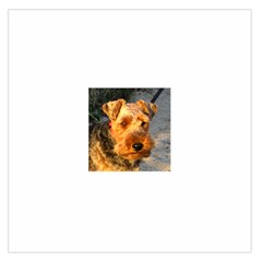 Welch Terrier Large Satin Scarf (Square)