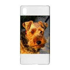 Welch Terrier Sony Xperia Z3+