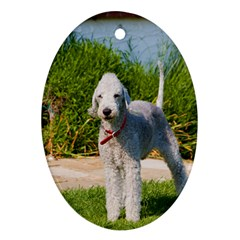 Bedlington Terrier Full Ornament (Oval)