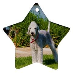 Bedlington Terrier Full Ornament (Star)