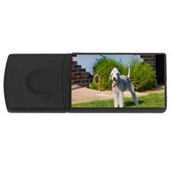 Bedlington Terrier Full USB Flash Drive Rectangular (2 GB)
