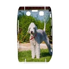 Bedlington Terrier Full Bold 9700