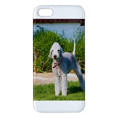 Bedlington Terrier Full iPhone 5S/ SE Premium Hardshell Case