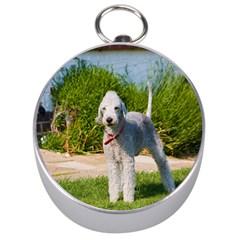 Bedlington Terrier Full Silver Compasses