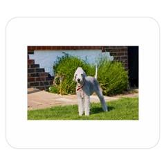 Bedlington Terrier Full Double Sided Flano Blanket (Small)