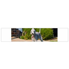 Bedlington Terrier Full Flano Scarf (Small)