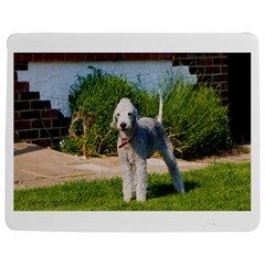 Bedlington Terrier Full Jigsaw Puzzle Photo Stand (Rectangular)