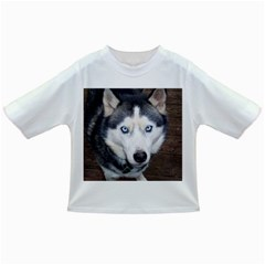 Siberian Husky Blue Eyed Infant/Toddler T-Shirts
