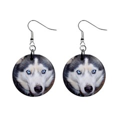 Siberian Husky Blue Eyed Mini Button Earrings