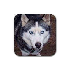 Siberian Husky Blue Eyed Rubber Coaster (Square)