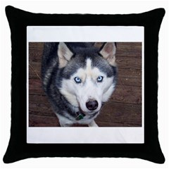 Siberian Husky Blue Eyed Throw Pillow Case (Black)