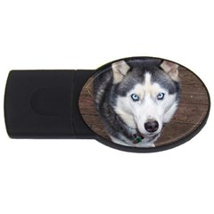 Siberian Husky Blue Eyed USB Flash Drive Oval (1 GB)