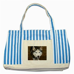 Siberian Husky Blue Eyed Striped Blue Tote Bag