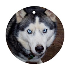 Siberian Husky Blue Eyed Round Ornament (Two Sides)