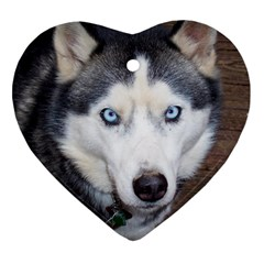 Siberian Husky Blue Eyed Heart Ornament (2 Sides)