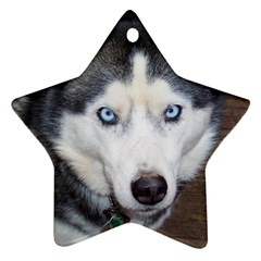Siberian Husky Blue Eyed Star Ornament (Two Sides)