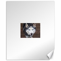 Siberian Husky Blue Eyed Canvas 16  x 20
