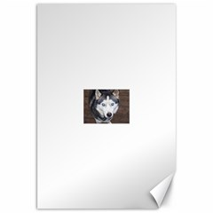 Siberian Husky Blue Eyed Canvas 20  x 30