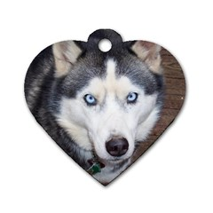 Siberian Husky Blue Eyed Dog Tag Heart (Two Sides)