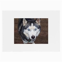 Siberian Husky Blue Eyed Large Glasses Cloth (2-Side)