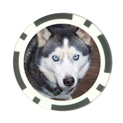Siberian Husky Blue Eyed Poker Chip Card Guards
