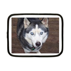 Siberian Husky Blue Eyed Netbook Case (Small)