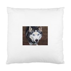 Siberian Husky Blue Eyed Standard Cushion Case (One Side)
