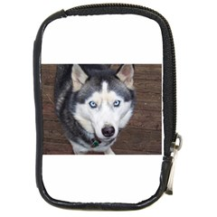 Siberian Husky Blue Eyed Compact Camera Cases