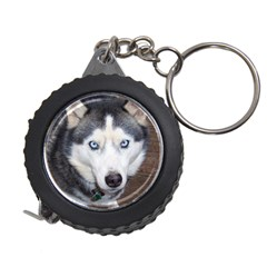 Siberian Husky Blue Eyed Measuring Tapes