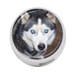 Siberian Husky Blue Eyed 4-Port USB Hub (One Side)