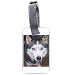 Siberian Husky Blue Eyed Luggage Tags (One Side)