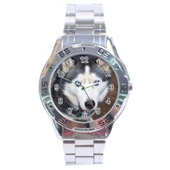 Siberian Husky Blue Eyed Stainless Steel Analogue Watch