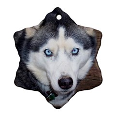 Siberian Husky Blue Eyed Snowflake Ornament (2-Side)