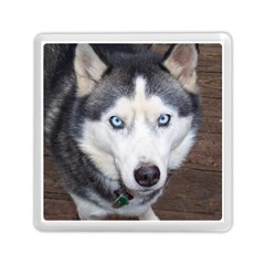 Siberian Husky Blue Eyed Memory Card Reader (Square)