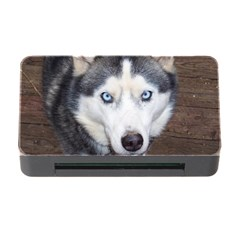 Siberian Husky Blue Eyed Memory Card Reader with CF