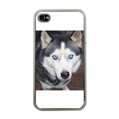 Siberian Husky Blue Eyed Apple iPhone 4 Case (Clear)