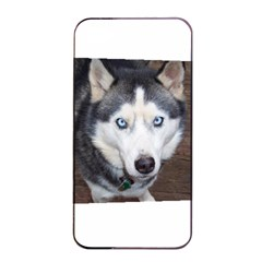 Siberian Husky Blue Eyed Apple iPhone 4/4s Seamless Case (Black)